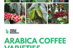 WCR Varieties Catalogue Goes Global