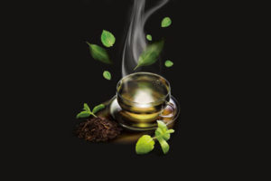 Barry Callebaut 'Refreshes' Its Caprimo Range with Launch of Mint Tea