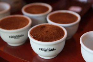 Klatch Coffee Debuts World's Most Expensive Brew