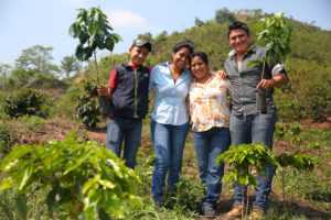 Starbucks donates coffee trees on National Coffee Day