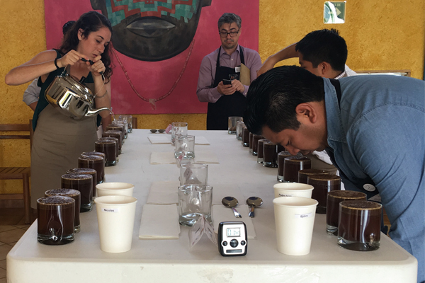 Reflections on the purpose and the path forward for coffee auctions