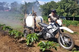 Potential for Mechanized Coffee Production in Costa Rica?