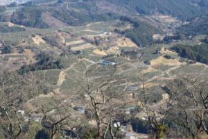 Through Chagusaba, Japan Connects with the Earth