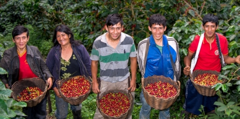 International Coffee Congress offers sustainability initiatives at work