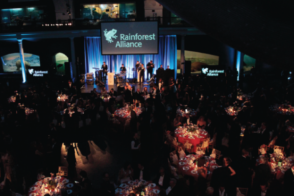 Rainforest alliance summit champions investments in sustainability