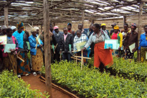 The Wood Foundation continues commitment to East African tea industry