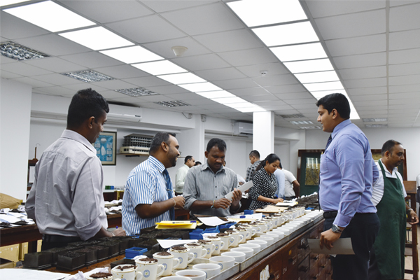 The Role of the Tea Broker in Today's Marketplace
